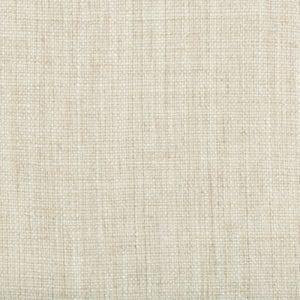 Willow Bloom Home Candor Ivory Drapes