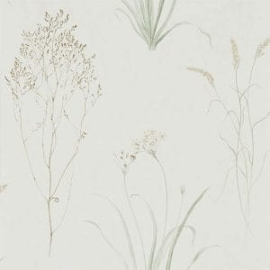 Willow Bloom Home Grasses Willow:Pebble Wallpaper