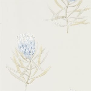 Willow Bloom Home Protea Blue:Canvas Wallpaper