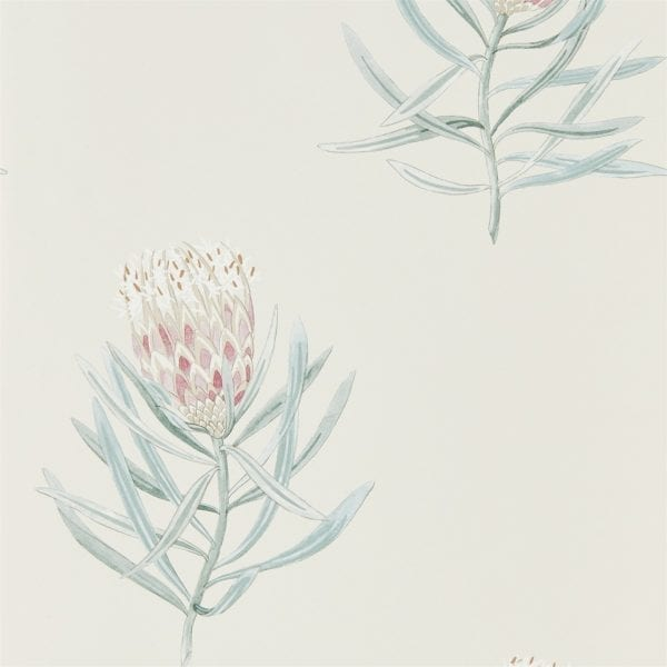 Willow Bloom Home Protea Porcelain:Blush