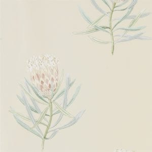 Willow Bloom Home Protea Russet:Green Wallpaper