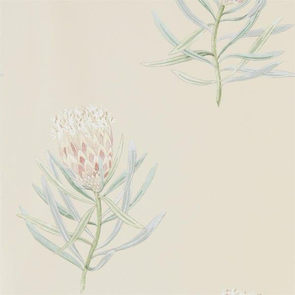 Willow Bloom Home Protea Russet:Green Wallpaper