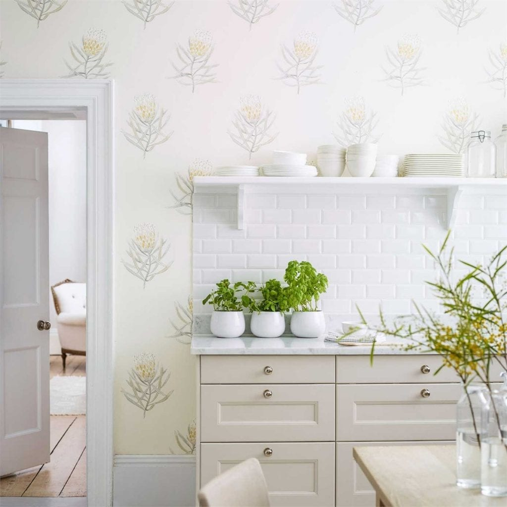 Willow Bloom Home Protea Wallpaper